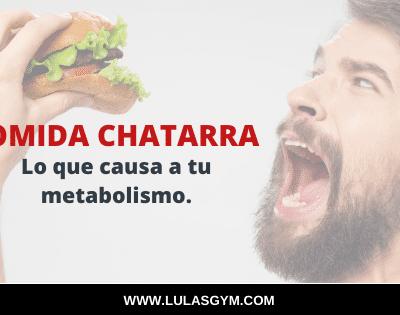 Comida Chatarra : Lo que causa  a  tu Metabolismo